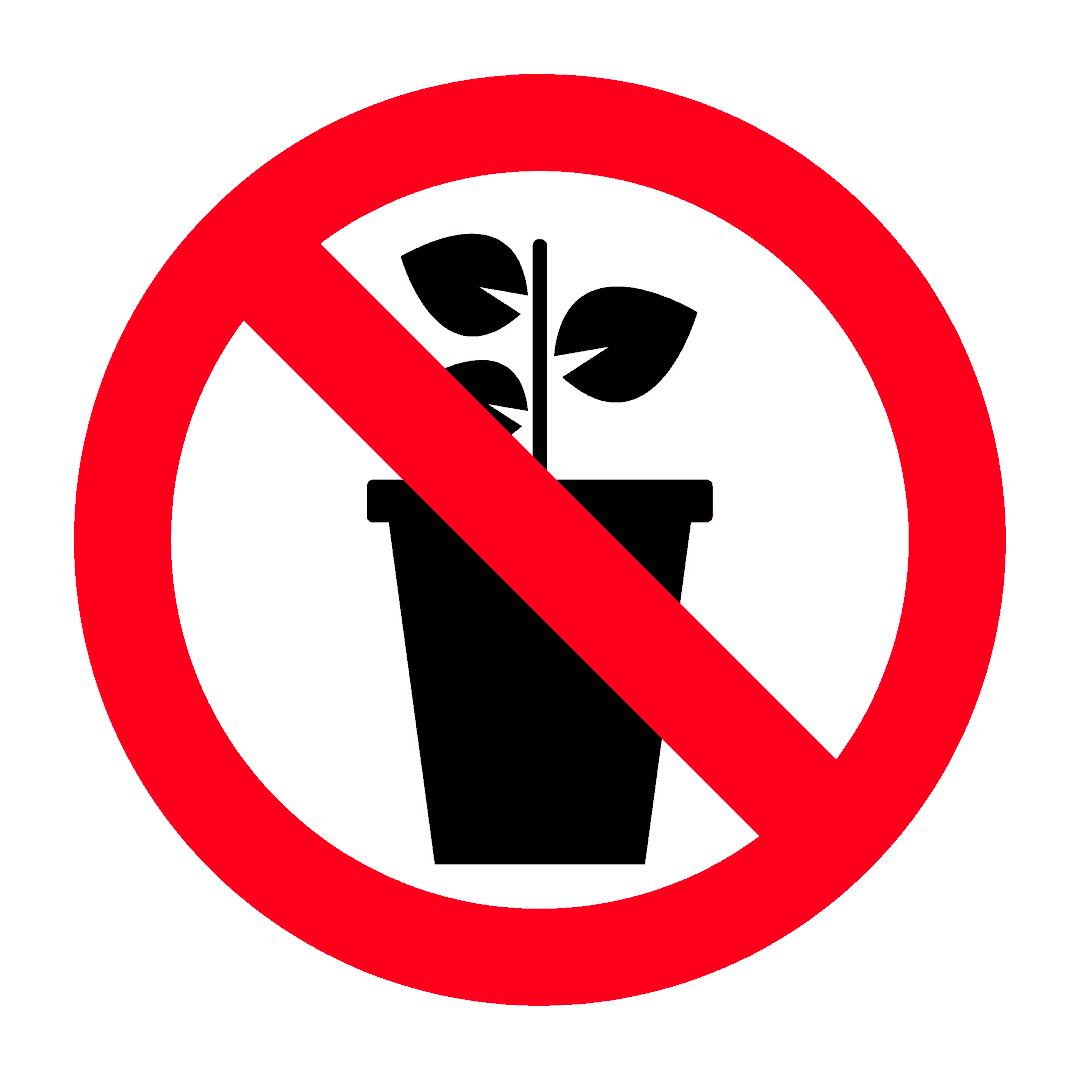 Crop-breeding technology not allowed